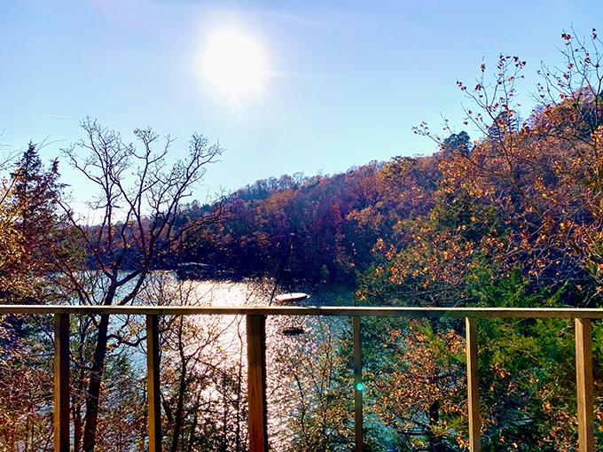 湖と木々の美しい絶景