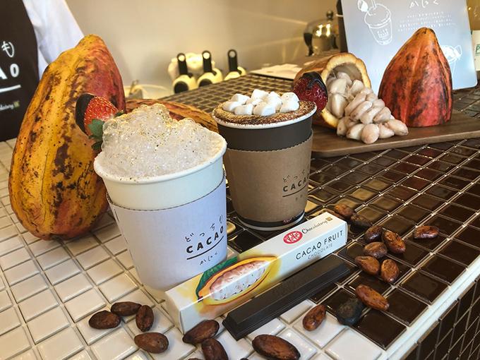 2種類のカカオドリンクとカカオフルーツチョコレート