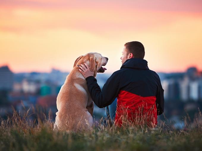 飼い犬と休憩する男性