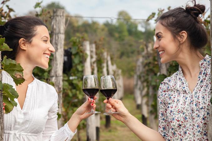 ワイングラスを合わせる女性2人の画像