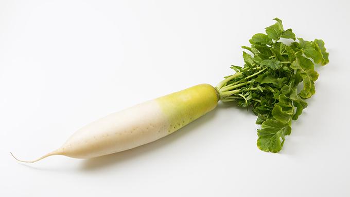 [大根]栄養たっぷり!大根の賢い保存方法