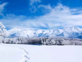 人生に一度は体験しておきたい! 真冬の北海道、世界遺産「知床」の「流氷ウォーク」