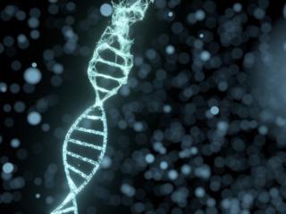 DNAのコンピュータデジタル画像
