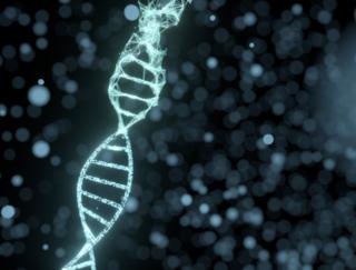 「男性不妊」の遺伝子発見。原因不明の不妊の謎解明につながるかも?