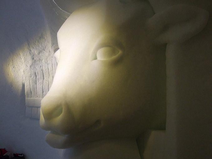 イグルーの氷の家の中の牛の雪の彫刻