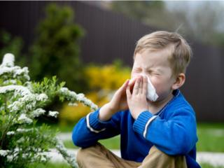 花粉症で鼻をかむ男の子