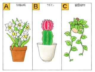 【心理テスト】部屋の中に植物を飾ります。あなたが選んだ植物は何?