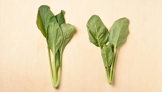 意外と知らない!?ほうれん草と小松菜の見分け方と、栄養の違い