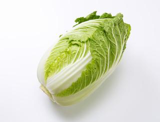 [白菜]幅広い料理に合う白菜の栄養価と、保存方法