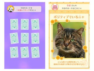 「猫さん」から癒しのメッセージを受け取ろう♪ 毎日が少しポジティブになるアプリ「猫さんの言うことにゃ」