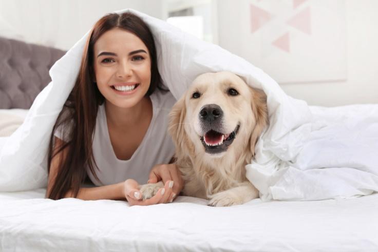 犬と女性の画像