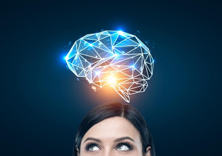 女性と脳のイラスト画像