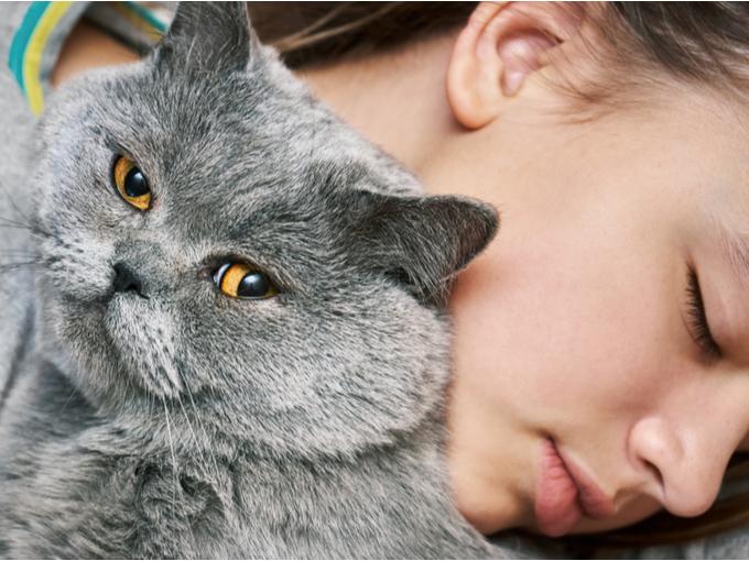 飼い主に抱き抱えられるネコ