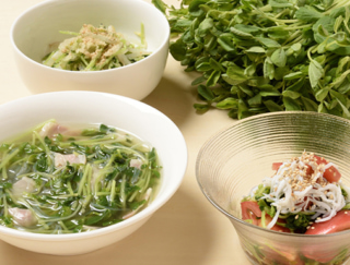 豆苗の食費節約レシピ!スープなど1人分約110円以内でできる