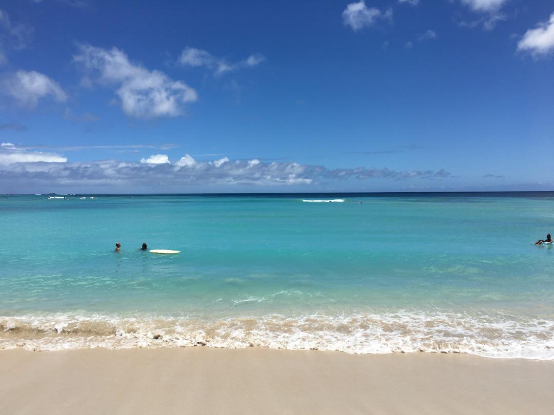 透明度が増したハワイの海
