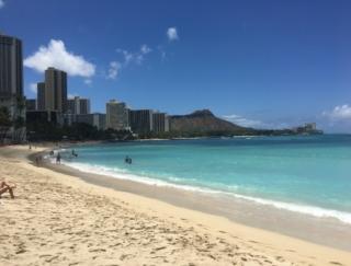 アフターコロナのハワイは魅力倍増!? 美しすぎる海に、珍しい動物たちの訪問も!