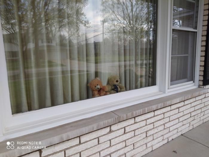 窓辺のくま