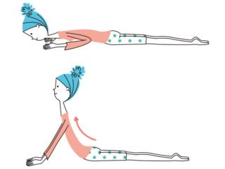 背骨のオットセイストレッチ