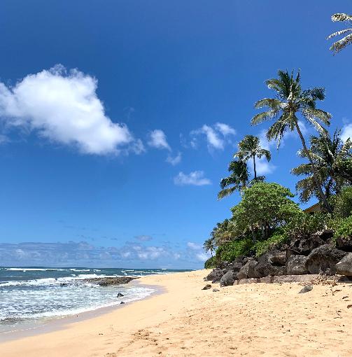 ハワイの海、横から撮影した画像