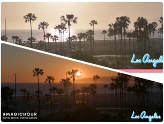 ベニスビーチのサンセットをライブ配信で。私の好きなおうち時間の過ごし方~ロサンゼルス編~