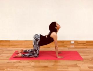 美姿勢を作る!背骨と骨盤を動かして、デスクワークのこり解消に効くストレッチ