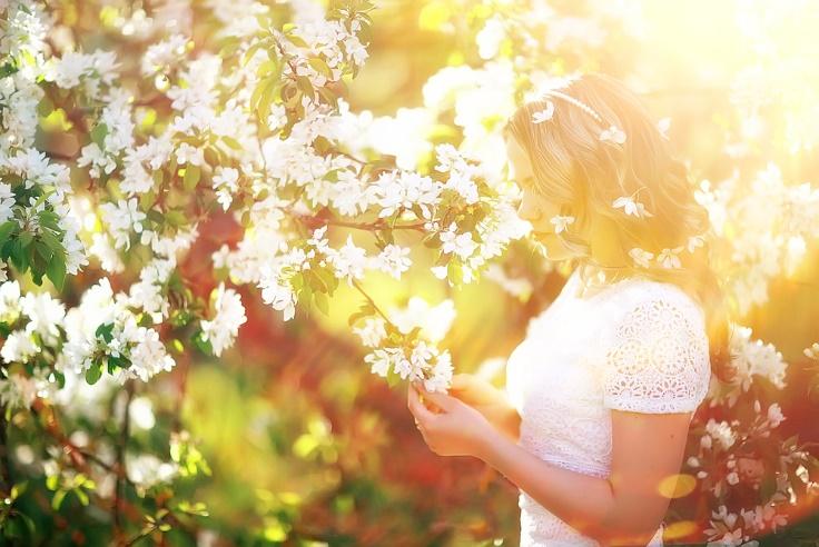 花を見る女性の画像