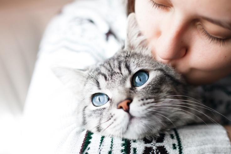 猫を抱きしめる女性画像