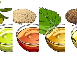 野菜料理によく合う!オリーブオイルなど、植物油の種類と特徴