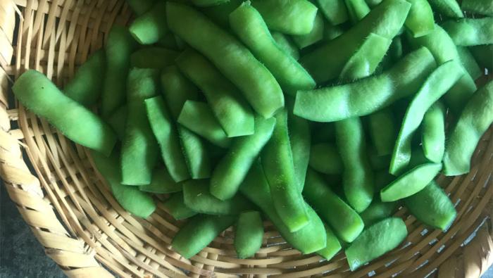 [枝豆の茹で方]料理研究家が教える!絶品に茹で上げるコツ