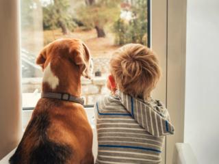 愛犬と一緒に窓の外を見る子ども