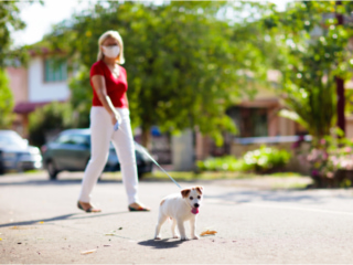 マスクをして愛犬と散歩に出かける女性
