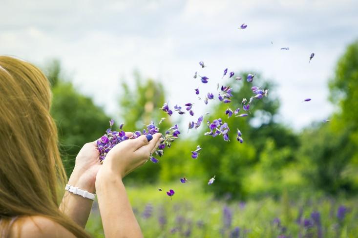 紫の花びらを散らす女性の手元画像