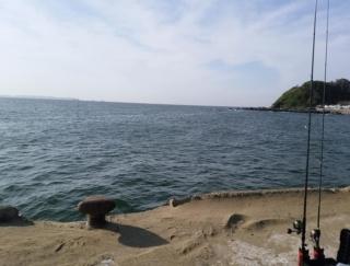 初心者でも簡単! コロナ禍ではじめてのトライ。サビキ釣りの仕掛けを楽しむ #Omezaトーク
