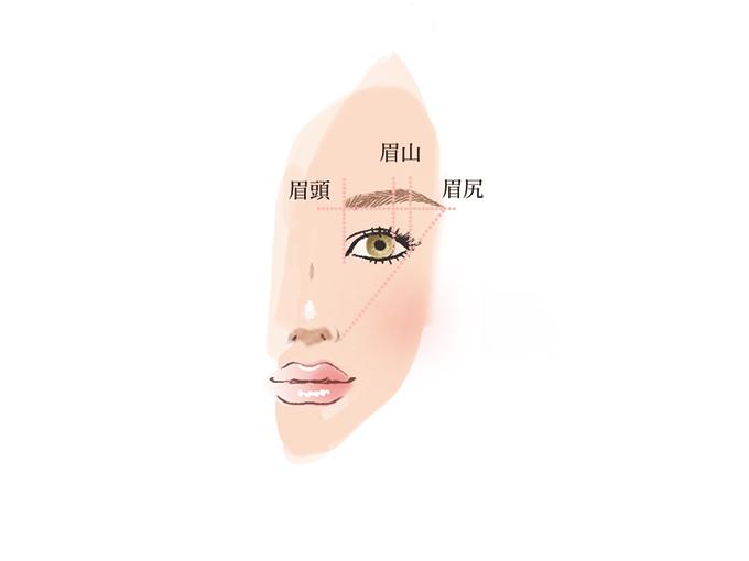女性の顔の左半分のイラスト画像