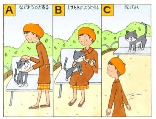 【心理テスト】公園に野良猫がいました。あなたがとった行動は?