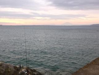 初心者でも釣れた! コロナ禍ではじめてのトライ。ルアーフィッシングを楽しむ #Omezaトーク