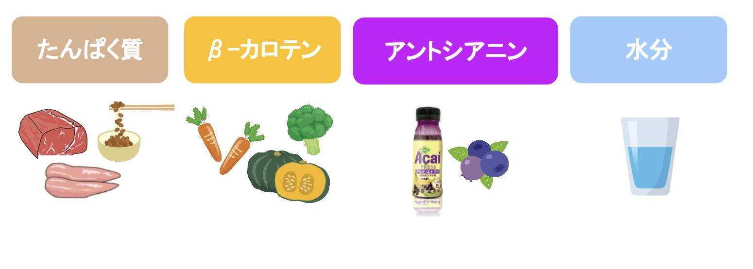 たんぱく質、β-カロテン、アントシアニンを含む食材と水分のイラスト