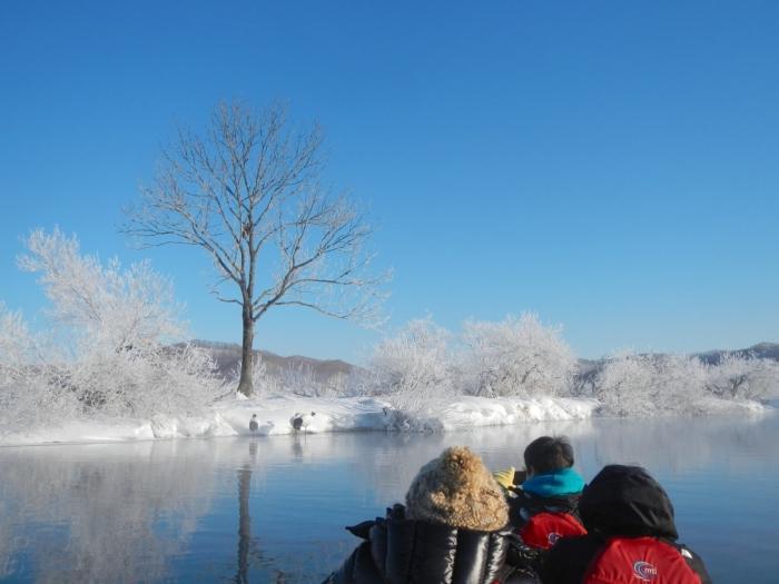 真冬の真っ白な景色