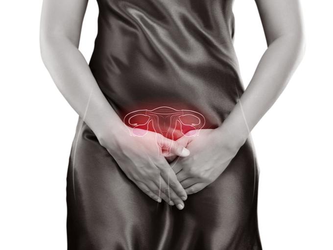 子宮の位置を示す女性の体の画像