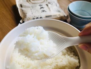 「やっぱりご飯派」の編集部員。ご飯釜に替えたら食べ過ぎが減った⁉  #Omezaトーク