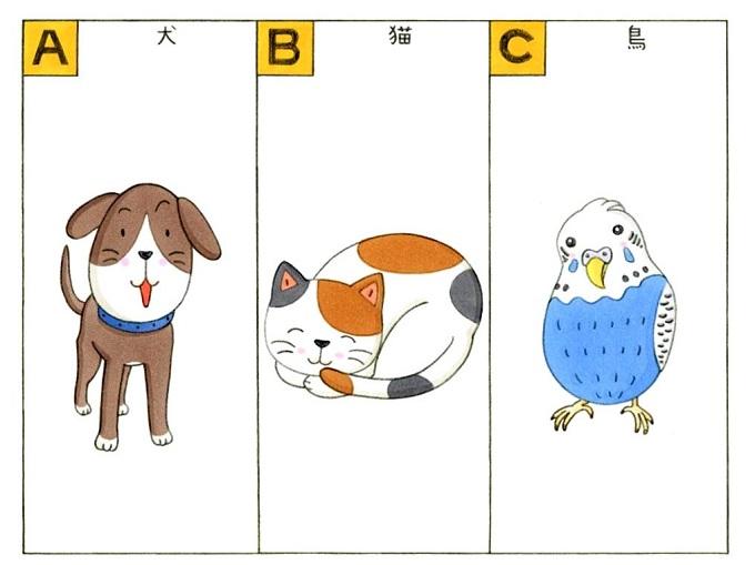 犬、猫、鳥のイラスト