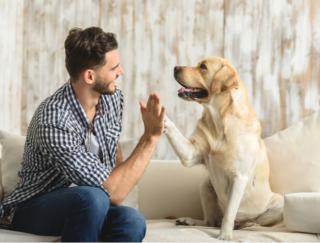 ペットはやはり癒し! 英国の研究で見えてきた「コロナ禍での人とペットの絆」