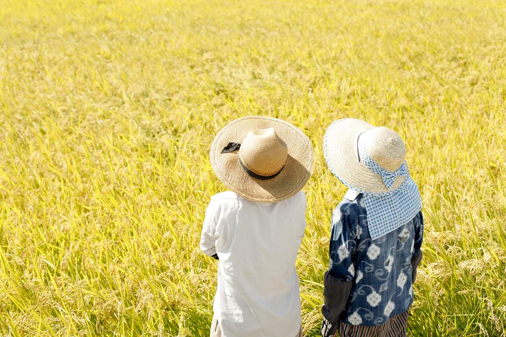 農家の画像
