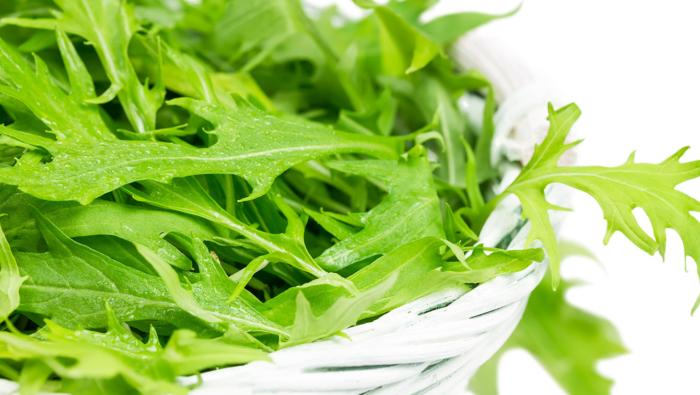 [水菜の冷蔵&冷凍保存]食感を約2倍長持ちさせる保存のコツ