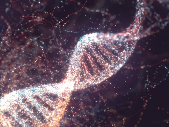 DNAのイメージ画像