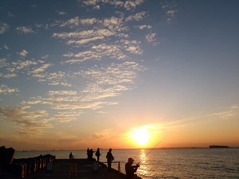 とある日の千葉県の岸壁釣りスポット