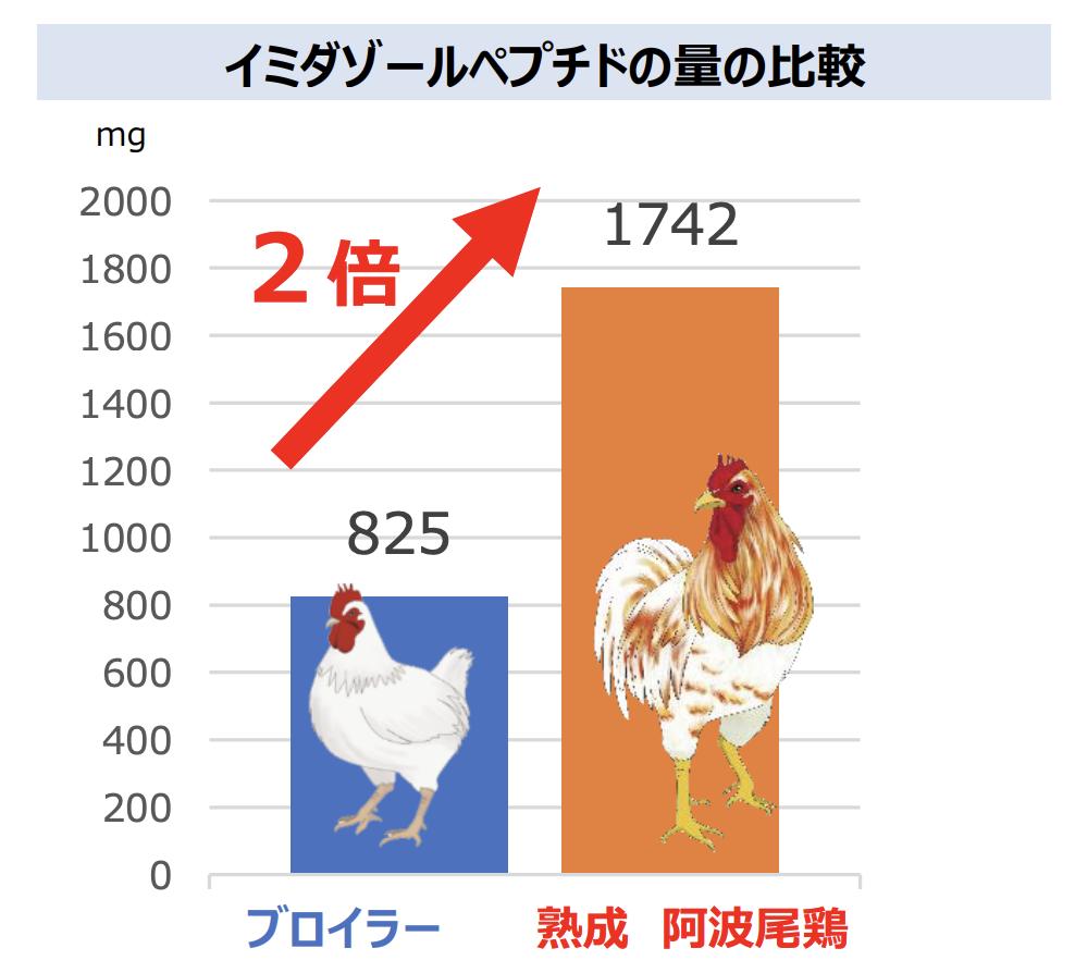 ブロイラーと阿波尾鶏のイミダゾールペプチド含有量の比較