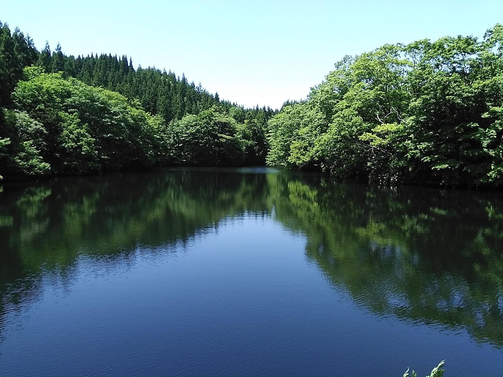 緑に囲まれたダム