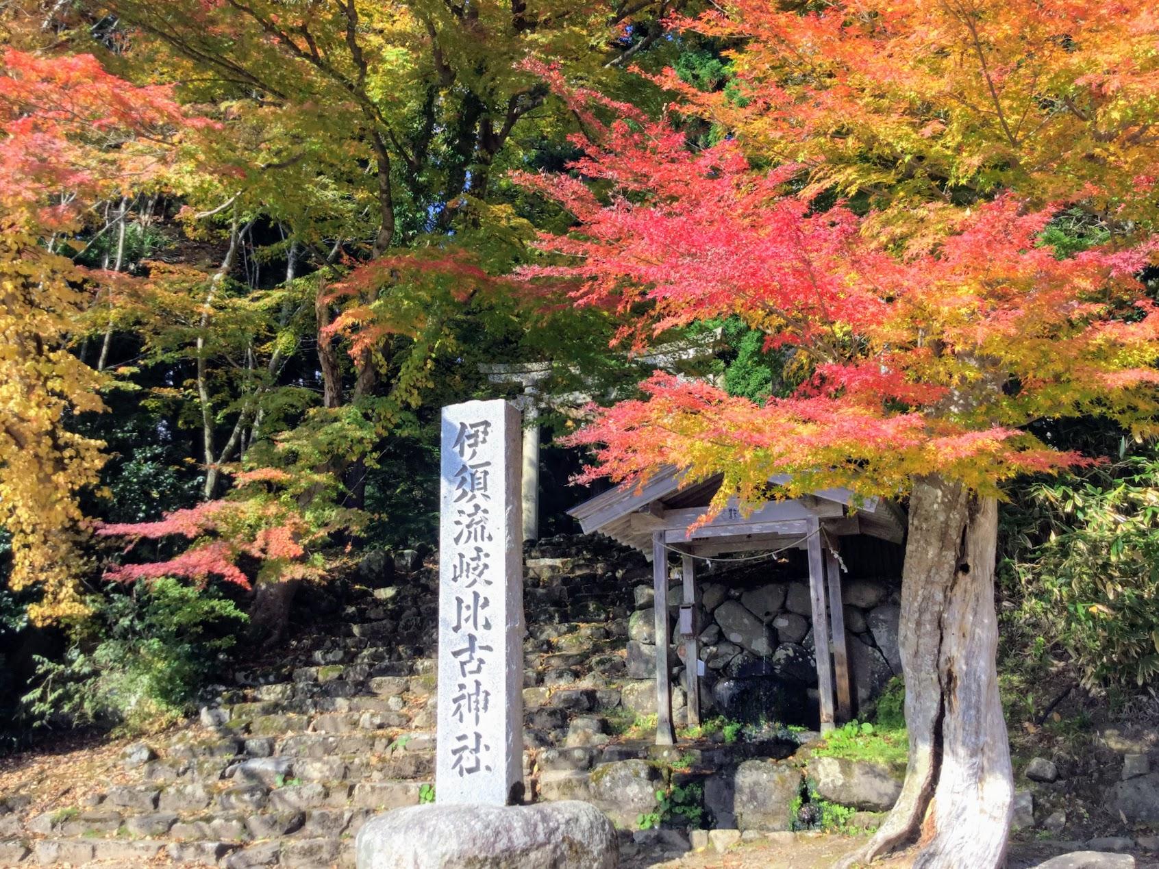 伊須流岐比古神社と紅葉