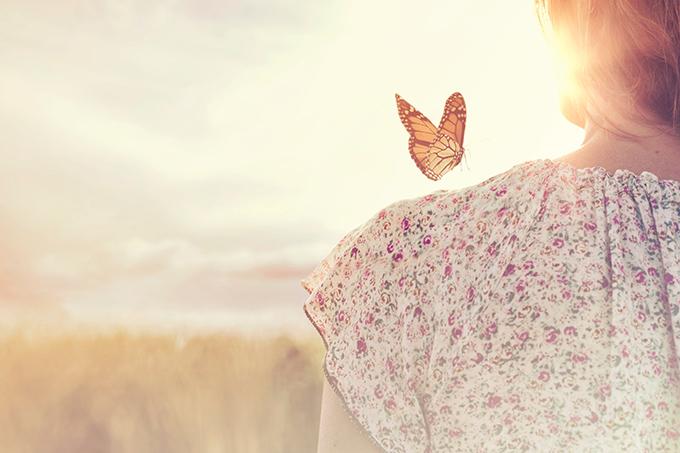 女性の肩にとまろうとする蝶